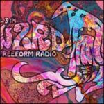 WZRD Chicago 88.3 FM